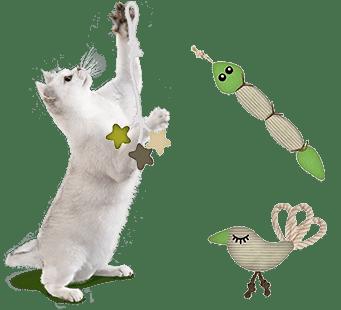 natuurlijk speelgoed voor katten